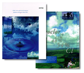 Bausch design page layout for Design of ash pond